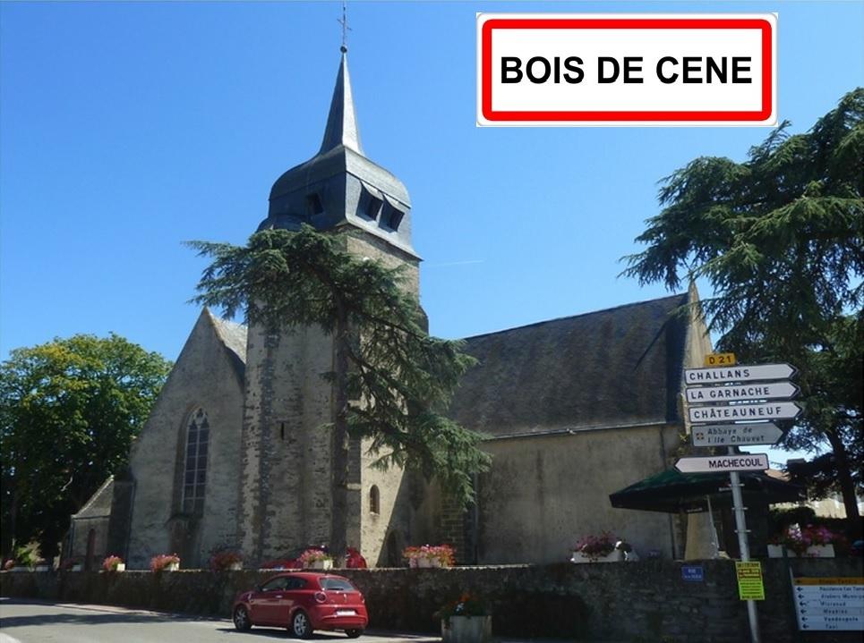 Présentation Bois de Cené